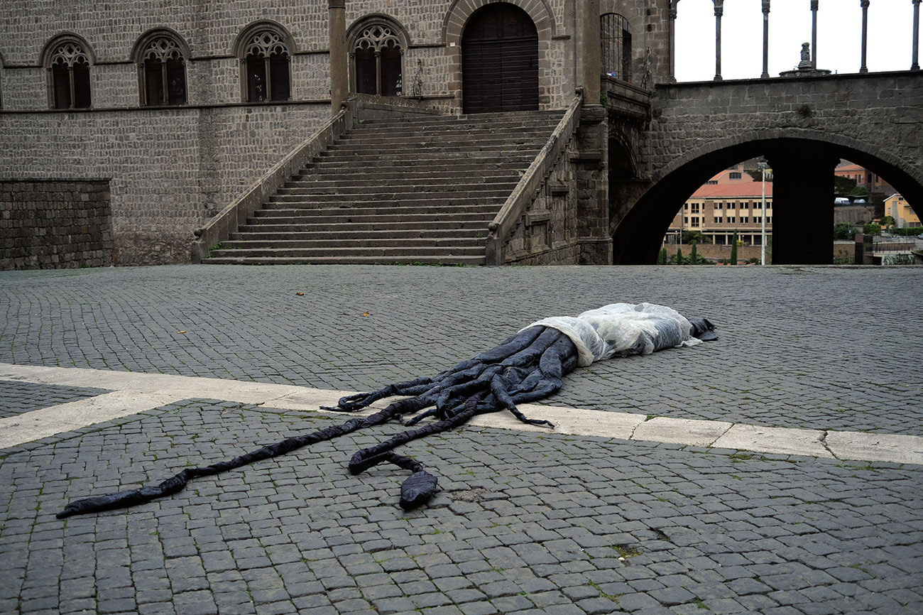 Federico Paris - Calamaro gigante